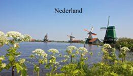 Op vakantie in Nederland.
